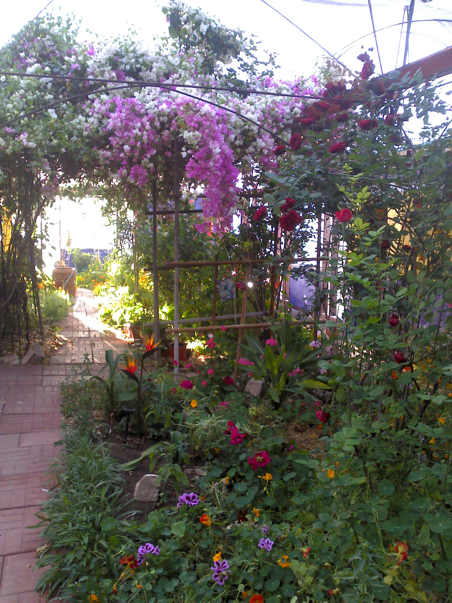 eve 39 s garden bed and breakfast when you want something special