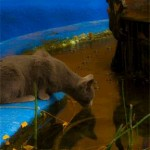 "Cat at a Cool Blue Pool-by Alexa Walker -8"" by 12"" Photograph"