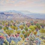 Priscilla Wiggins Desert Mountain Art Oil Paintings Landscape Colorado Texas-5