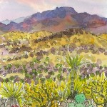 Priscilla Wiggins Desert Mountain Art Oil Paintings Landscape Colorado Texas-15