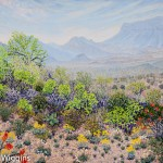 Priscilla Wiggins Desert Mountain Art Oil Paintings Landscape Colorado Texas-3
