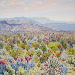 Priscilla Wiggins Desert Mountain Art Oil Paintings Landscape Colorado Texas-5