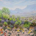 Priscilla_Wiggins_Desert_Mountain_Art_Oil_Paintings_Landscape_Texas-3