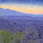 Priscilla_Wiggins_Desert_Mountain_Art_Oil_Paintings_Landscape_Texas-38