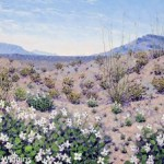 Priscilla_Wiggins_Desert_Mountain_Art_Oil_Paintings_Landscape_Texas-9